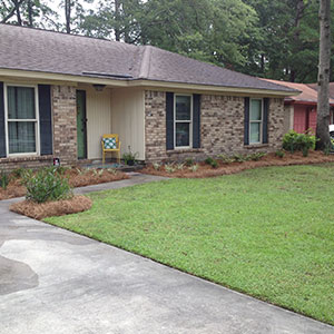 Lawn Fertilization Savannah GA